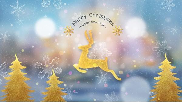 青岛佳百特祝大家平安夜快乐、圣诞节快乐!