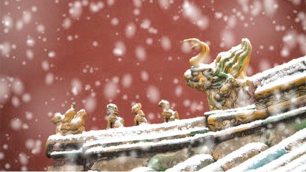 青岛佳百特祝大家小雪快乐!